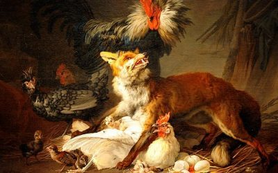 Fox in the Hen House: The Dangers of Forums