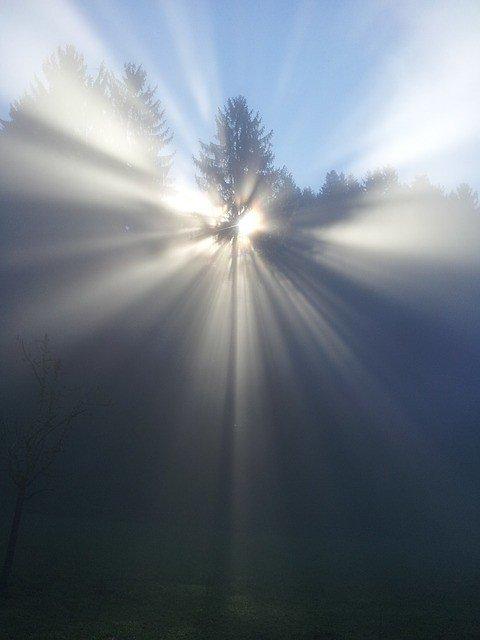 fog-524071_640