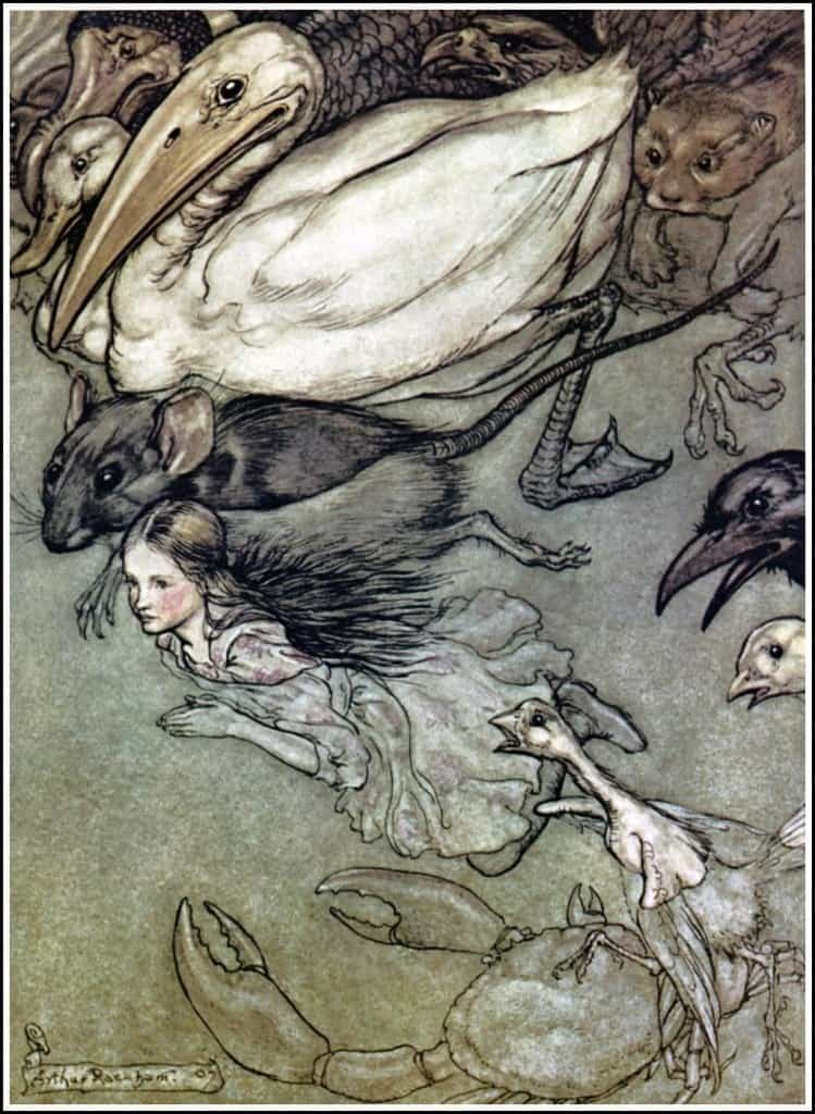 The Pool of Tears by Arthur Rackham