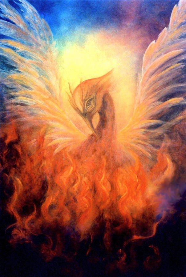 phoenix-rising-marina-petro