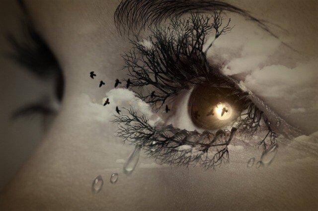 eye-447428_640