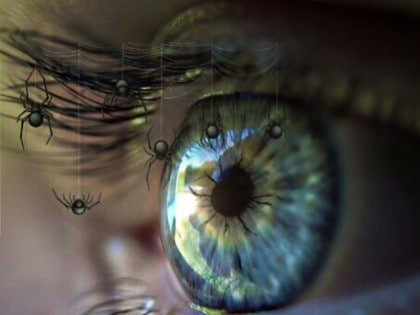 Psychopathy: Is It In Their Eyes?