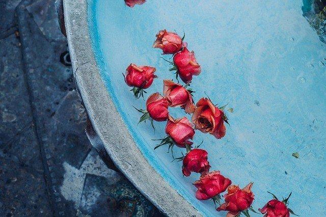 Should You Forgive the Psychopath?